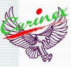 Carinex Ltd. - Logo