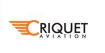 Criquet Aviation - Logo