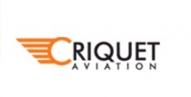 Criquet Aviation - Logo