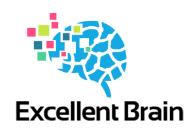 Excellent Brain Ltd. - Logo