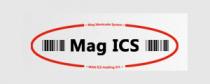 Mag ICS Holding Co. - Logo