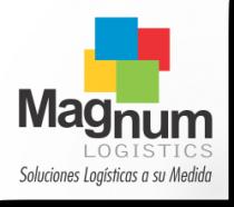 Magnum Logistics S.A. - Logo