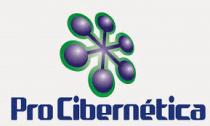 Procibernetica S.A. - Logo