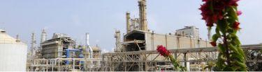 Ruwais Fertilizer Industries (FERTIL) - Pictures