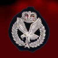 International Insignias - Pictures 2