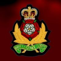 International Insignias - Pictures 3