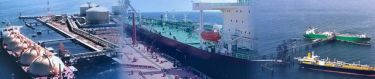 Maharashtra Maritime Board - Pictures