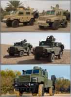 Integrated Convoy Protection (ICP) - Pictures