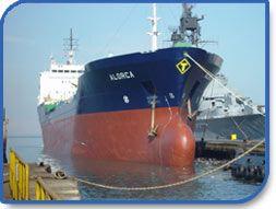 Servicios Industriales de la Marina S.A. (SIMA) - Pictures 2