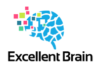 Excellent Brain Ltd. - Logo