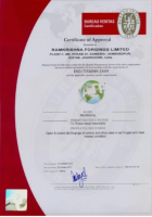 Ramkrishna Forgings Ltd. - Pictures 12
