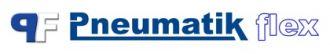 PNEUMATIK FLEX - Logo