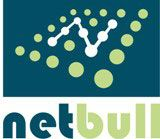 Netbull IT Services Ltd. - Logo