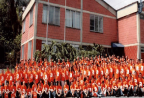 ORGANIZACION CHAID NEME - Madeal S.A. - Pictures
